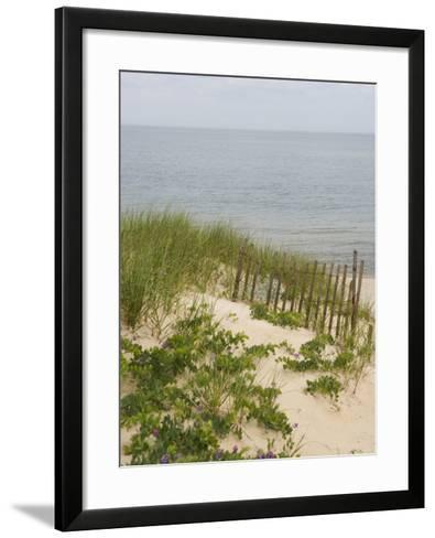 Sandy Dune with Vetch and Grasses--Framed Art Print