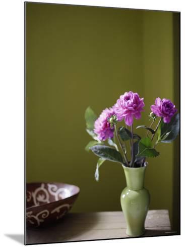 Olive Ambiance, Plum Dahlias--Mounted Photo