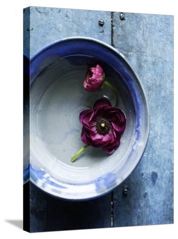 Small Blue Bowl, Two Flowers--Stretched Canvas Print