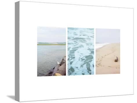 Seagull Watch--Stretched Canvas Print