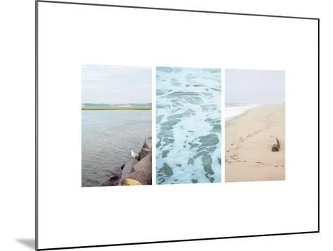 Seagull Watch--Mounted Photo