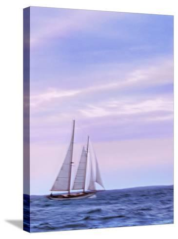Sailing Home--Stretched Canvas Print