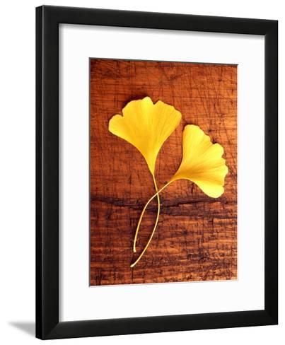 Yellow Ginkgo Leaves--Framed Art Print