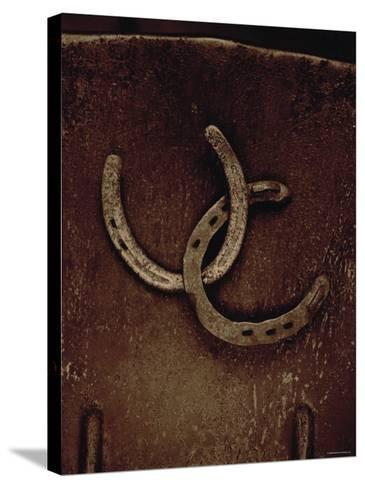 Lucky Horse Shoes on Rust Metallic--Stretched Canvas Print