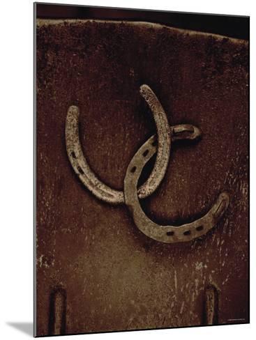 Lucky Horse Shoes on Rust Metallic--Mounted Photo