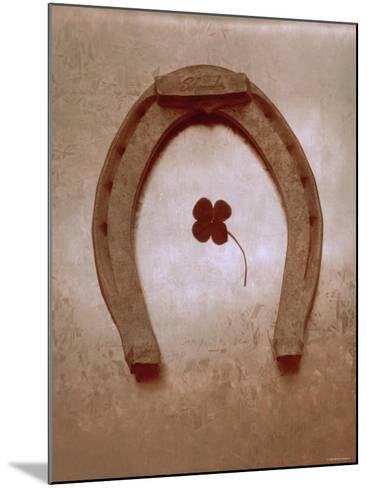 Lucky Horse Shoe on Dusty Rose Metallic I--Mounted Photo