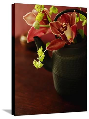 Petite Blossoms II--Stretched Canvas Print