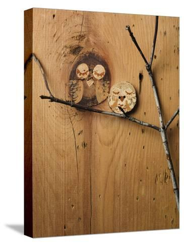 Wood Owl Knots--Stretched Canvas Print