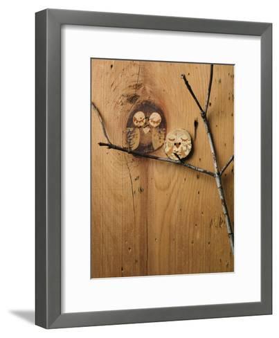 Wood Owl Knots--Framed Art Print