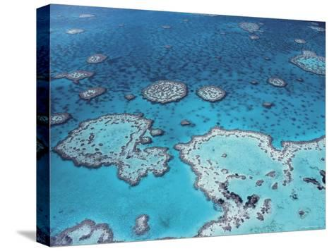Aerial View of Great Barrier Reef, Queensland, Australia-Jurgen Freund-Stretched Canvas Print