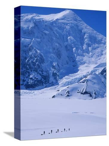 Climbing Expedition Passes Below Mount Forraker in the Alaska Range-Bill Hatcher-Stretched Canvas Print