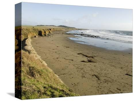 Beach North of San Simeon, California-Rich Reid-Stretched Canvas Print