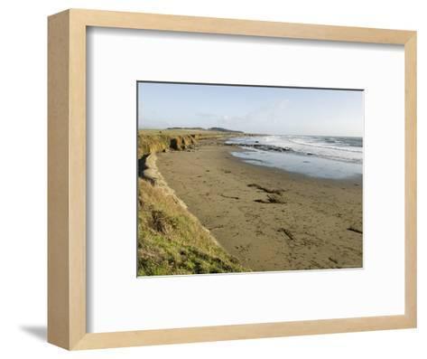 Beach North of San Simeon, California-Rich Reid-Framed Art Print