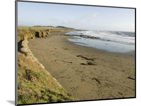 Beach North of San Simeon, California-Rich Reid-Mounted Photographic Print