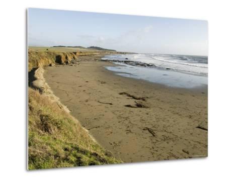 Beach North of San Simeon, California-Rich Reid-Metal Print