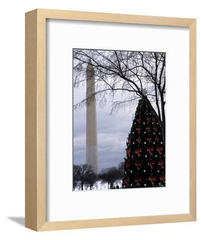 Christmas Tree on the Mall of Downtown D.C., Washington, D.C.-Stacy Gold-Framed Art Print