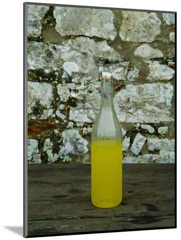 Bottle of Limoncello Sits on a Picnic Table at a Tuscan Villa, Tuscany, Italy-Todd Gipstein-Mounted Photographic Print
