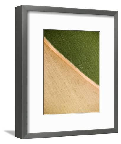 Alfalfa Crop with Pivot Irrigation, Zambia-Michael Fay-Framed Art Print