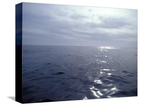 Calm Ocean with Small Ripples Reflects a Sunbeam Off the Surface, Australia-Jason Edwards-Stretched Canvas Print