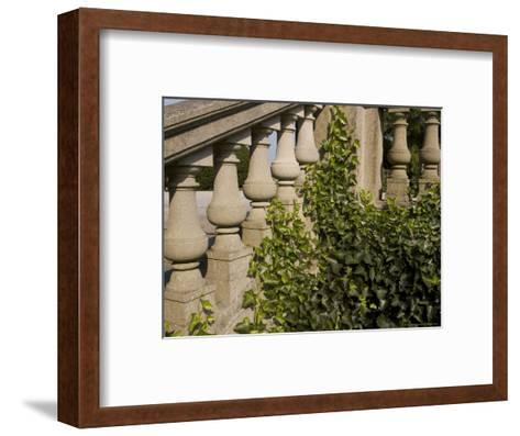 Close View of the Ivy Covered Balustrade of a Staircase-Todd Gipstein-Framed Art Print