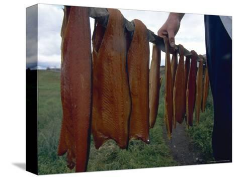 Iceland: Lake Trout Being Smoked-Brimberg & Coulson-Stretched Canvas Print