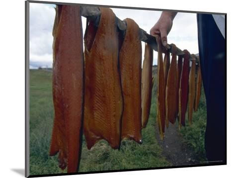 Iceland: Lake Trout Being Smoked-Brimberg & Coulson-Mounted Photographic Print