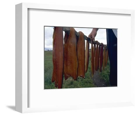 Iceland: Lake Trout Being Smoked-Brimberg & Coulson-Framed Art Print