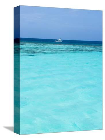 Dive Boat Outside Coral Reef Anchored with Diveres in the Water, Ambergris Caye, Belize-James Forte-Stretched Canvas Print