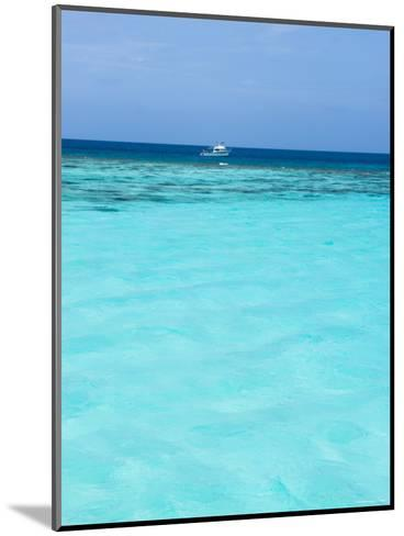 Dive Boat Outside Coral Reef Anchored with Diveres in the Water, Ambergris Caye, Belize-James Forte-Mounted Photographic Print