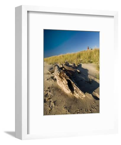 Driftwood on the Beach with a Lighthouse in the Background, Block Island, Rhode Island-Todd Gipstein-Framed Art Print