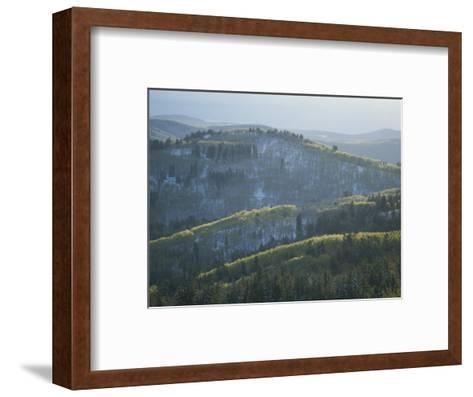 Fresh Green Aspen Trees on Snowy Slopes in the Wasatch Range, Utah-James P^ Blair-Framed Art Print