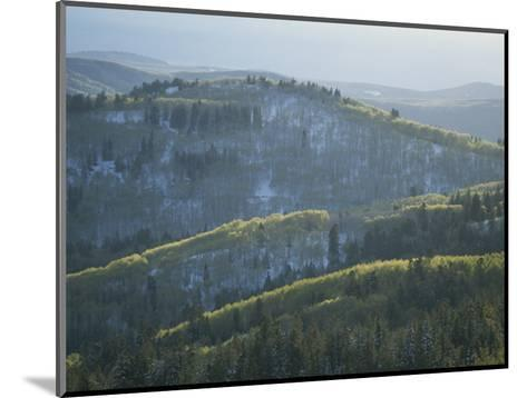 Fresh Green Aspen Trees on Snowy Slopes in the Wasatch Range, Utah-James P^ Blair-Mounted Photographic Print