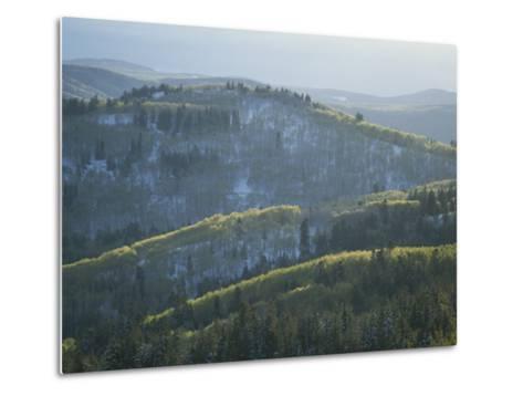 Fresh Green Aspen Trees on Snowy Slopes in the Wasatch Range, Utah-James P^ Blair-Metal Print