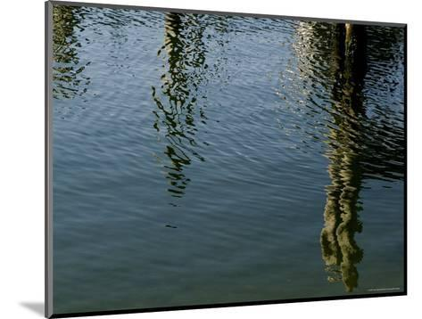 Pilings of a Pier Reflected in Block Island Sound-Todd Gipstein-Mounted Photographic Print