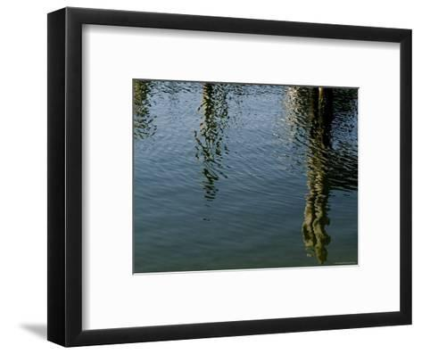 Pilings of a Pier Reflected in Block Island Sound-Todd Gipstein-Framed Art Print