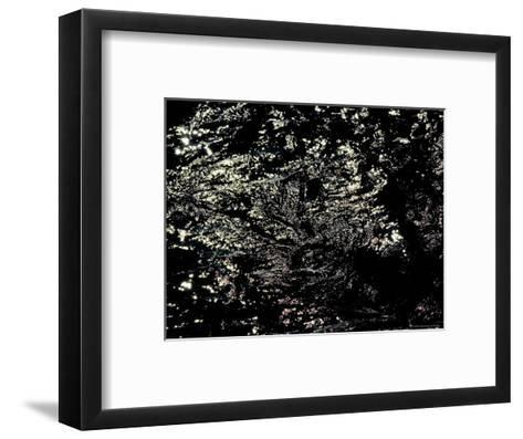 Light Shining on the Black Surface of the Water, Groton, Connecticut-Todd Gipstein-Framed Art Print