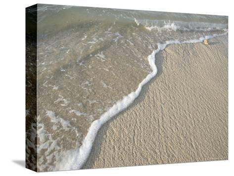 Ocean Water on the Beach, Cabo San Lucas, Mexico-Gina Martin-Stretched Canvas Print