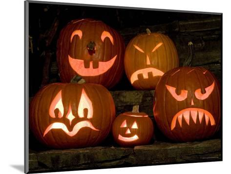 Row of Carved, Lit Pumpkins, Lexington, Massachusetts-Tim Laman-Mounted Photographic Print