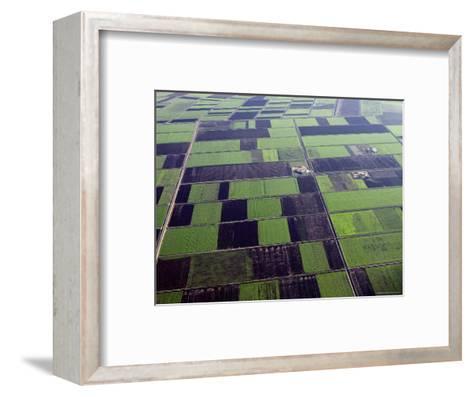 Rainfall Increases in the Maghreb Region Making Cultivation Possible, Morocco-Michael Fay-Framed Art Print