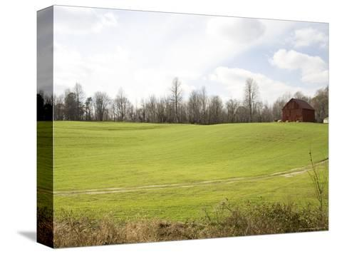 Rural Farmlands Provide a Scenic View-Stephen St^ John-Stretched Canvas Print