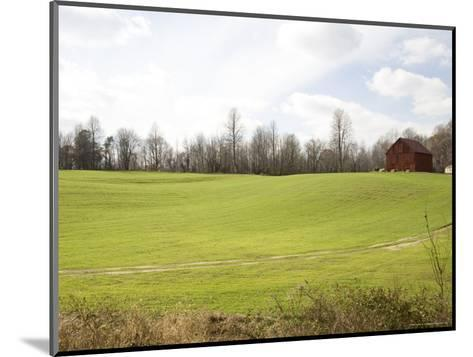 Rural Farmlands Provide a Scenic View-Stephen St^ John-Mounted Photographic Print