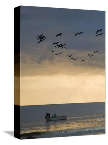 North Carolina Fishermen Cast Nets under Flock of Pelicans at Sunset-David Evans-Stretched Canvas Print