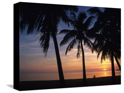 Sun Rise near Placencia, Belize-Bill Hatcher-Stretched Canvas Print