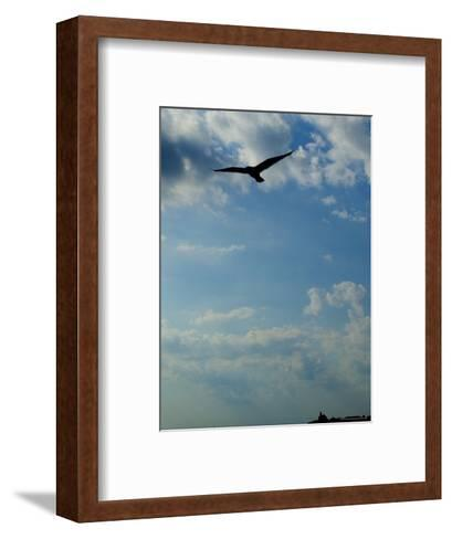 Seagull Soars over Long Island Sound and Plum Island Light-Todd Gipstein-Framed Art Print