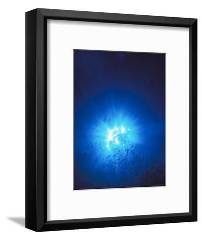 Silhouette with Sun Burst Light Rays in Blue Water, Solomon Islands-James Forte-Framed Art Print