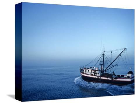 Shrimp Boat in the Gulf of Mexico-Kenneth Garrett-Stretched Canvas Print