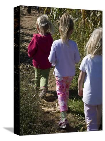 Siblings Walk Through a Corn Maze-Stacy Gold-Stretched Canvas Print