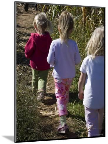 Siblings Walk Through a Corn Maze-Stacy Gold-Mounted Photographic Print