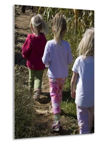 Siblings Walk Through a Corn Maze-Stacy Gold-Metal Print