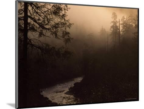 South Fork of Smith River at Sunrise, California-Phil Schermeister-Mounted Photographic Print
